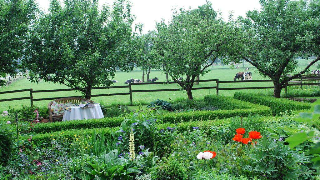 Gartenbilder Unterm Christbaum Landkreis