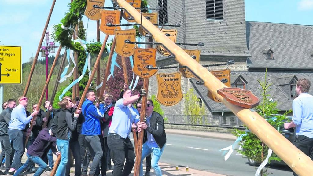 Stundenlang beschäftigt: Die Usselner Burschen stellen den Maibaum auf.
