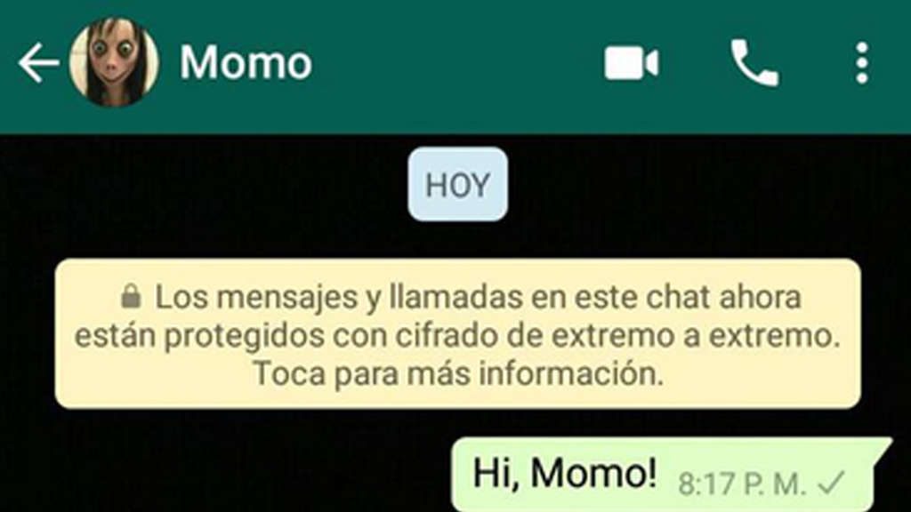 "Ein angeblicher Screenshot des WhatsApp-Accounts ""Momo""."