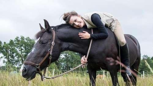 09ba4d7f66e81 Das kostet der Traum vom eigenen Pferd. Magazin