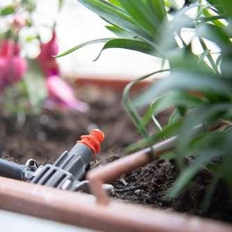 Verantwortlich 1 Stücke Real Touch Phalaenopsis Blatt Künstliche Pflanzen Blatt Dekorative Blumen Hilfs Material Blume Dekoration Orchidee Blätter Hell In Farbe Künstliche Dekorationen